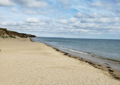 Utah Beach,where Brig. Theodore Roosevelt Jr. led American troops